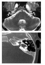 Radiological Evaluation